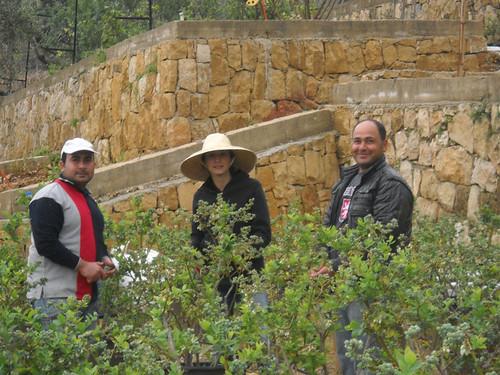 Sarah with Mohamad & Ghannam Inspecting Plants  Mar 25, 2015 | by toutberryfarms