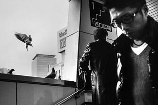Tokyo street | by SungsooLee.com