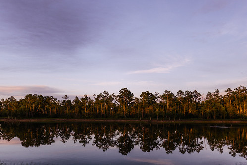 trees sunset reflection nature canon landscape outdoors eos is florida exploring wideangle explore usm exploration f4 estero 1635mm ultrawideangle f4l 1635l 5dmkiii 5dmk3 5d3 5dmarkiii 5dmark3