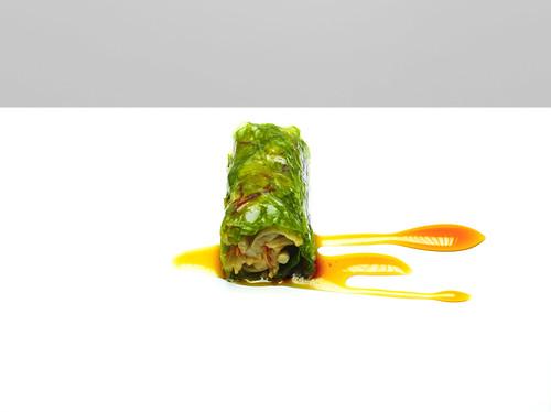 nems végétale   by studio mixture