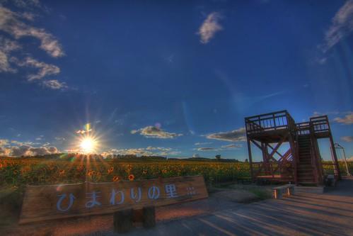 sunset summer sky sun hokkaido cannon hdr magiclantern saikachi n43cd 北竜町ひまわりの里