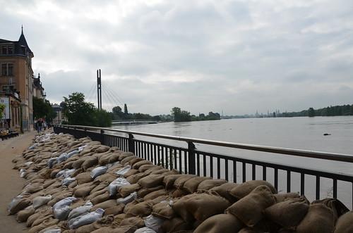 9022342045 23194a2c61 Elbehochwasser   Juni 2013