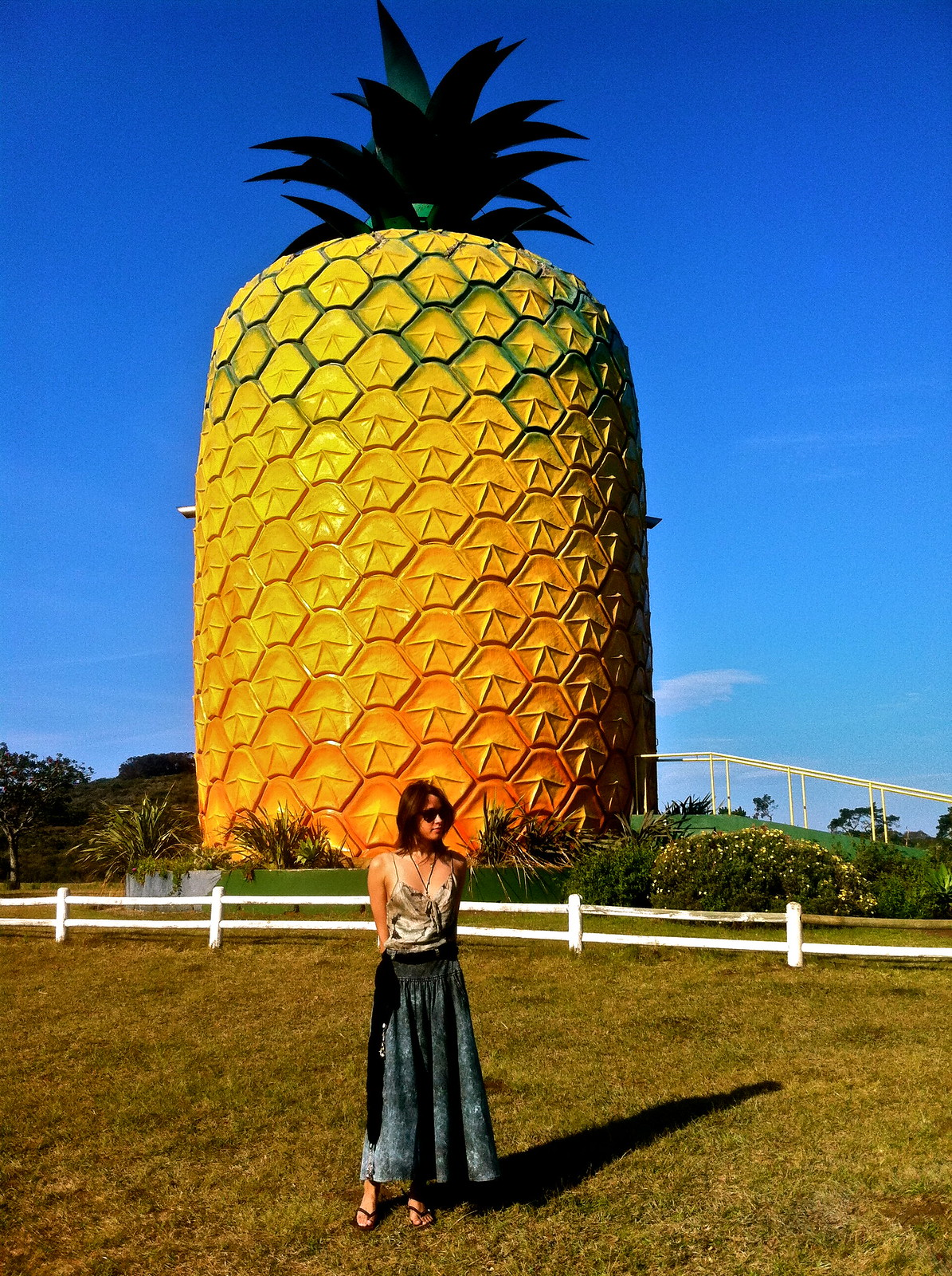 The Big Pineapple, Bathurst
