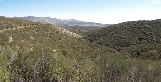 125 PCT San Felipe Hills - looking east toward Ranchita | by _JFR_
