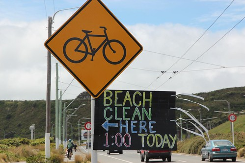 Beach cleanup, Cobham Drive
