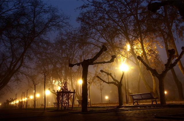 P7159233-1 niebla