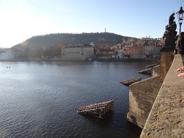 Der Drache in Prag wird das das Schattenfeuer in eure steinernen Hallen tragen wo die steinernen Bauten vom Vogtshaus und der Tempel aufragen und gemeißelte Tiere in Kisten voll unermesslicher Reichtümer die schönsten Edelsteine tragen 00288