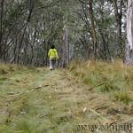 02 Viajefilos en Australia. Barrington NP 31