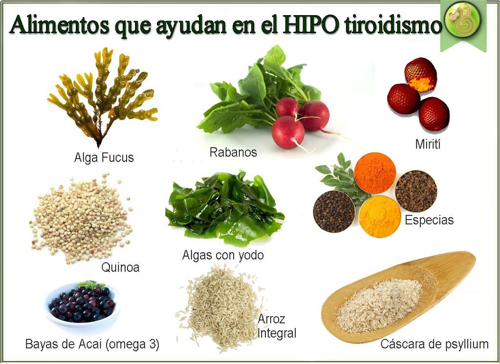 Hipo Tratamiento Natural De Hipotiroidismo 1 Qué Es El Flickr