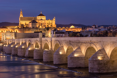Cordoba Bridge at Night