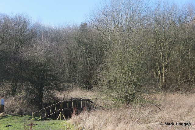 A walk in Rosliston in The National Forest