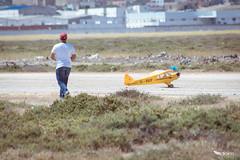 Piper J-3 Cub -23-