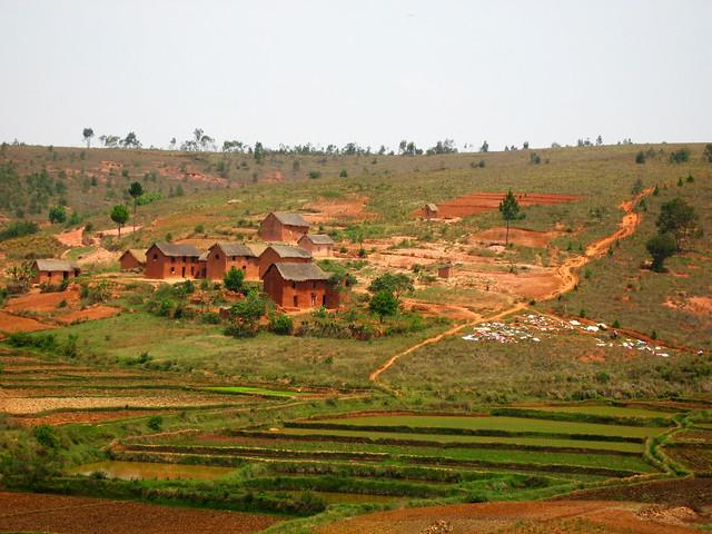 Transition to Madagascar132
