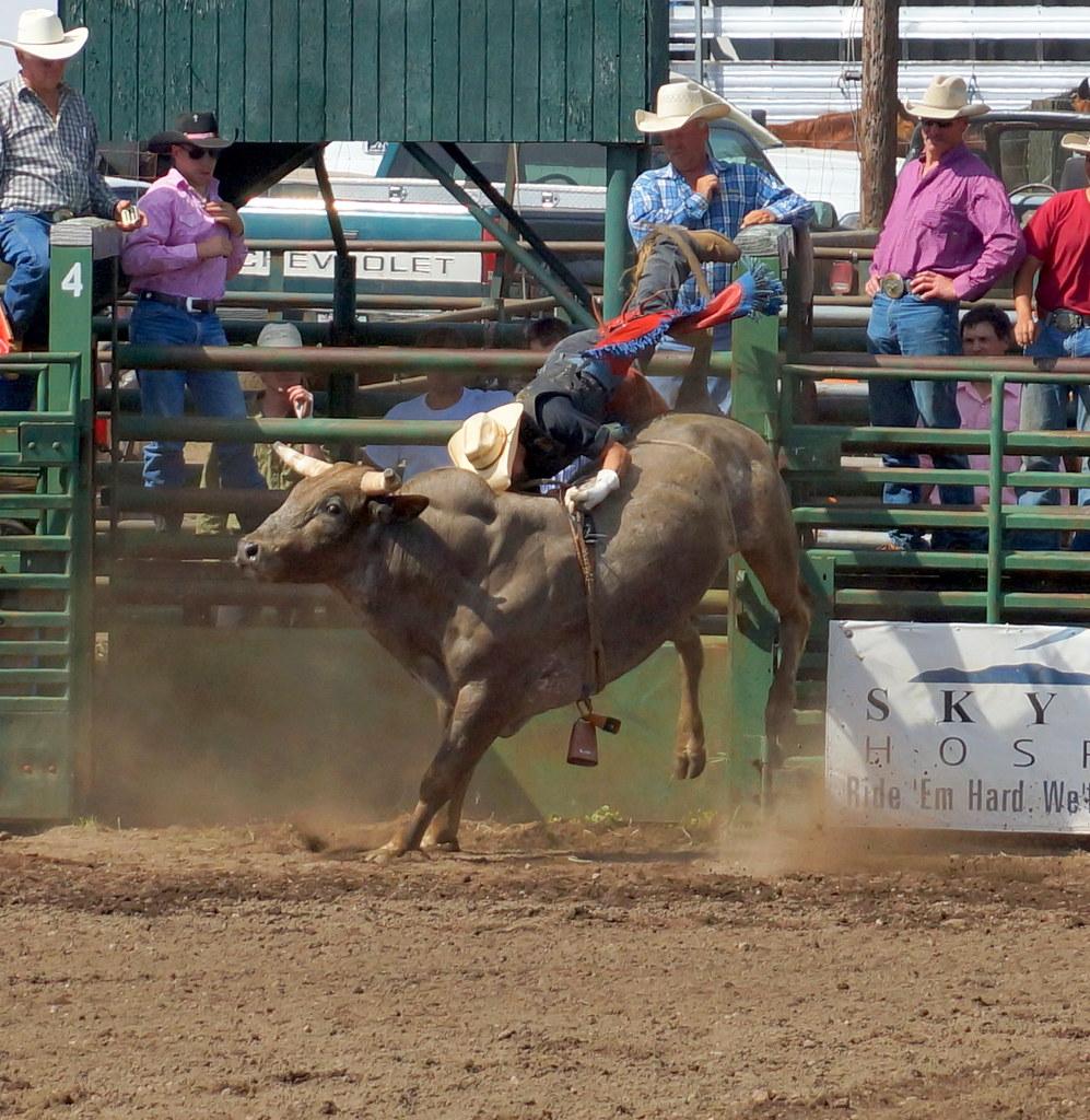 Bull Riding Ketchum Kalf Rodeo Glenwood Wa