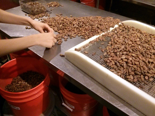 Sorting cacao beans, Dandelion, Valencia Street, the Mission, San Francisco, CA, USA   by gruntzooki