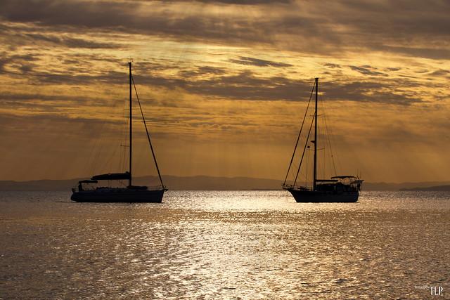 rays silhouette