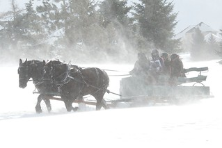 2014 Sleigh and Cutter Festival | by pmarkham