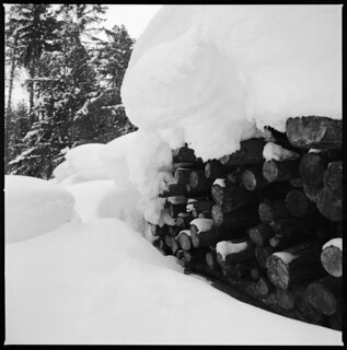 Heaps of snow (and wood) | by schoeband