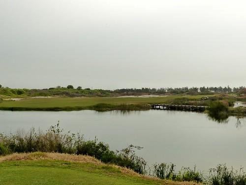 florida golfcourse golfclub crenshaw redcourse coore streamsong