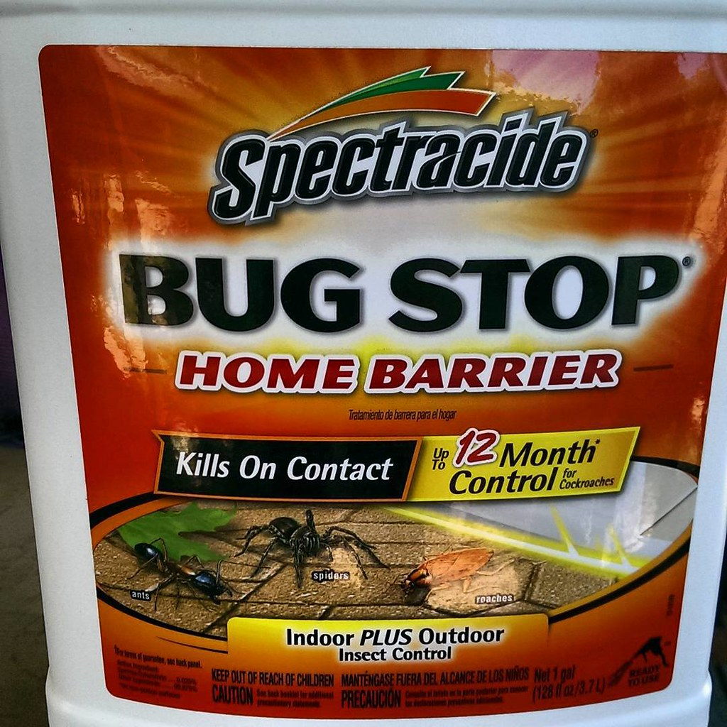 There's a LOT of bugs in the desert, and I HATE bugs!! Thi