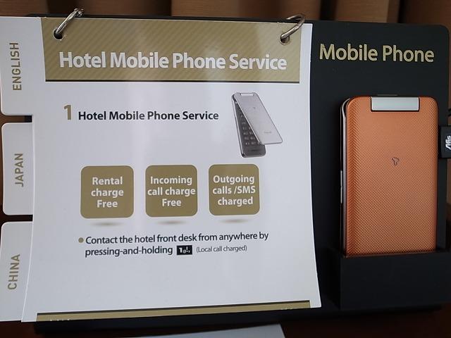 <p>g)携帯がただで使えるようですね。。。</p>