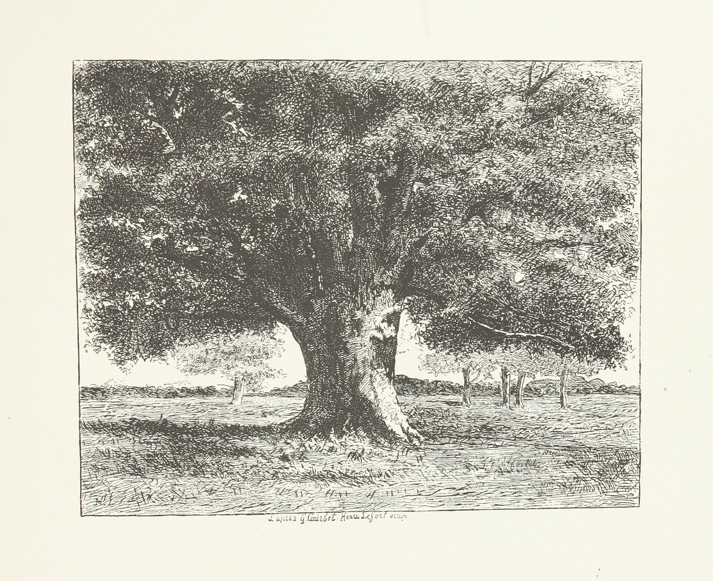 Image Taken From Page 165 Of Nature And Art Poems And Pi