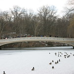 Central Park bridge over ice