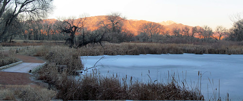 morning winter ice nature fountain creek frozen pond colorado peak center explore co pikes marsh floyd ponds muaddib pikespeak cattail explored inexplore fountaincolorado fountainco fountaincreeknaturecenter floydmuaddib