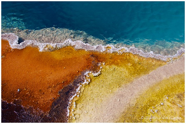Thermal Pool - West Thumb Geyser Basin