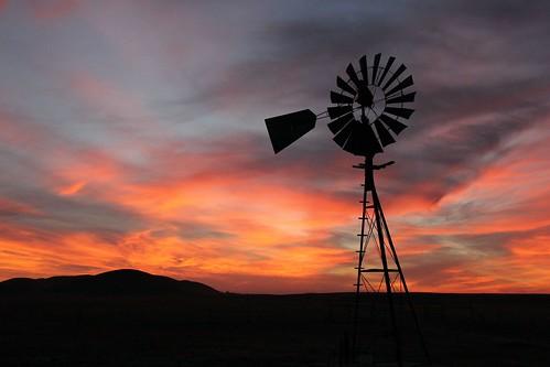 northerncalifornia sunrise dawn solanocounty suisunmarsh rushranch rushranchopenspace