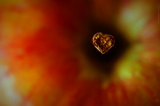 Cuore...di mela | by mariateresa toledo