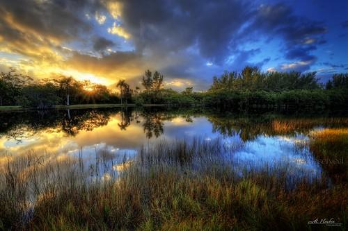 miami coralgables florida lake mangroves reflections water mathesonhammock mariohouben canon canon6d canon1740mmf4 mariohoubenphotography primemh