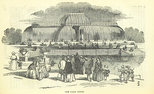 Image taken from page 15 of '[Kew Gardens with the pleasure grounds and park: a handbook guide for visitors. Fourth edition.]'