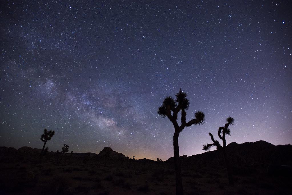 Night Sky Nps Lian Law Joshua Tree National Park Flickr