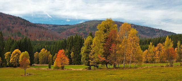 **Autumn Valley**