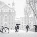 Snow Storm by daniel.frauchiger