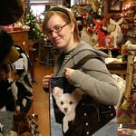 Dog in a bag bag