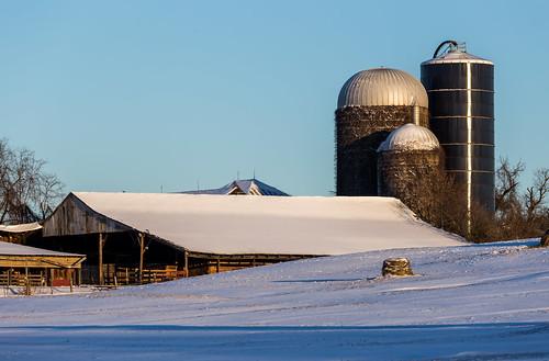 winter snow sunrise farm ivy silo clear