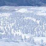 Mt.Zao Series (14)