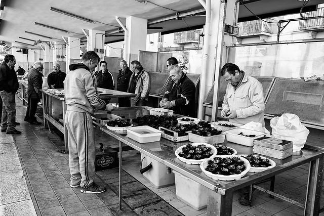 Bisceglie - Puglia - Italia