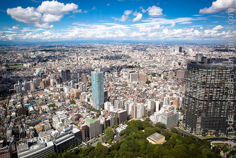 View from the Tokyo Metropolitan Government Offices