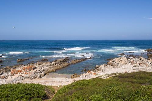 southafrica easterncape portelizabeth schoenmakerskop