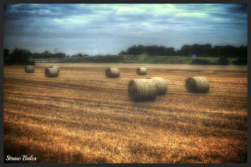 summer landscape farm harvest straw round bales dunboyne meath fujifilmxe1 fujixe1