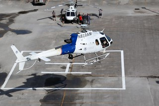 2009 American Eurocopter AS-350-B3, S/N:4667 - N810AM, U.S. Department of Homeland Security Customs and Border Protection (CBP)