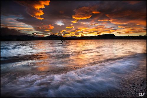 wanaka lake dawn sunrise tree longexposure canon 5d 1740mm tripod gndfilter polariser waves wave southisland south island otagonz otago new zealand newzealand clouds thatwanakatree
