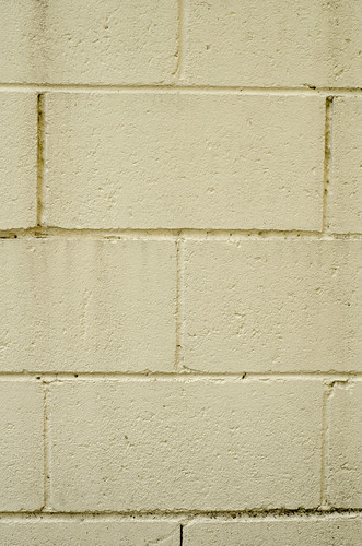 Texture - Yellow painted wall cinder blocks | by Andrew Beeston