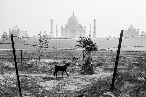 Taj Mahal,India | by A. adnan