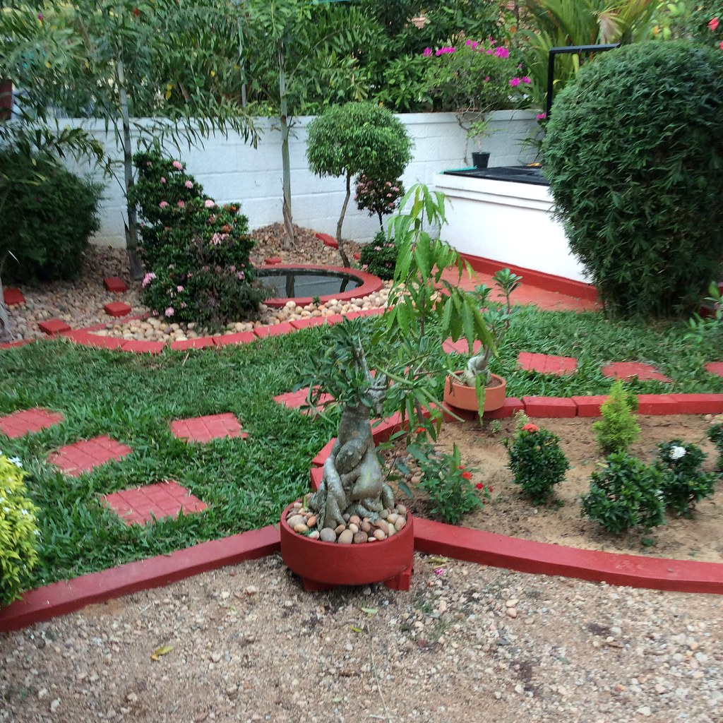 View of home garden, Front yard -