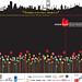 Rotterdam Kırmızı Lale Film Festivali