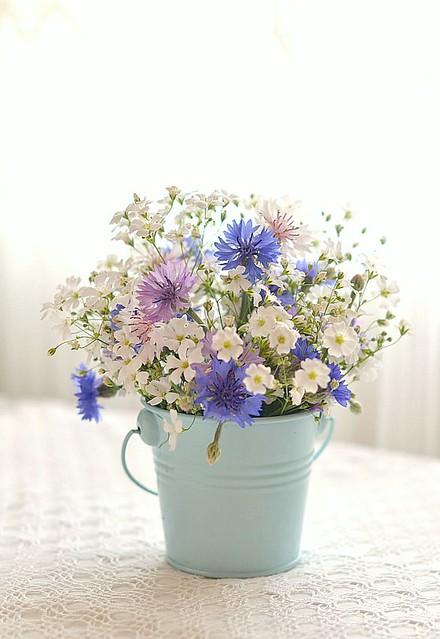 flowers from my garden ...